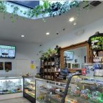Best Cannabis Dispensary