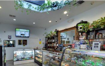 Best Cannabis Dispensary
