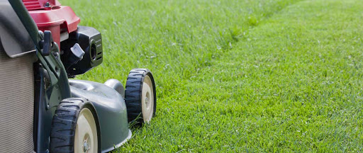 Beginners Guide for Lawn Mowing