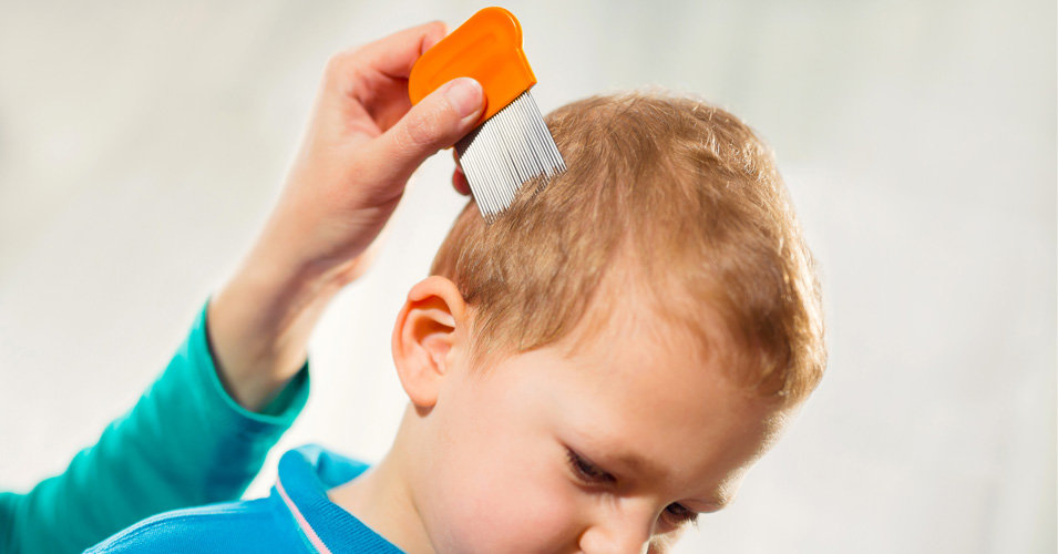 Know about the treatment and removal of lice by identifying clear advantages.